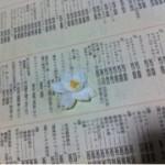 image00_2.jpg